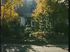 Die Wilde Lusten 1984