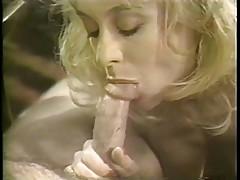 Hard Choices (1987) Scene 6. Nina Hartley, Nick Random