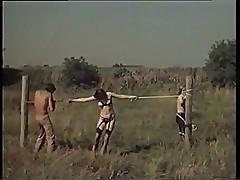 Sex in Field 70s